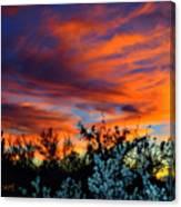 Arizona Sky Canvas Print