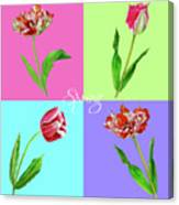 Background With Tulips Canvas Print