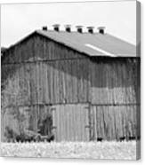 Barn In Kentucky No 71 Canvas Print