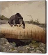 Bear And Canoe Canvas Print
