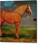 Belgian Draft Horse. Canvas Print