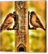 2 Bird's Eating  Canvas Print