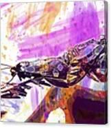 Black Butterflies Butterfly  Canvas Print