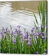 Blue Daffodils Canvas Print