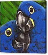 2 Blue Canvas Print