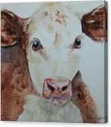 Brand Spankin New Canvas Print