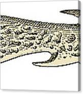 Bronze Age Barbed Point Harpoon Canvas Print