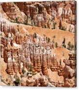 Bryce Canyon - Utah Canvas Print