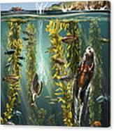 California Kelp Forest Canvas Print
