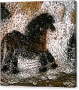 Cave Art: Lascaux Canvas Print