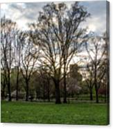 Central Park Views  Canvas Print