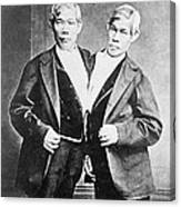 Chang And Eng, Siamese Twins Canvas Print