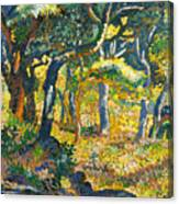 Clearing In Provence  Canvas Print