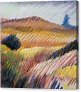 Coastal Hills Canvas Print
