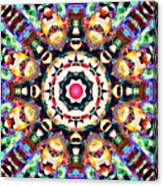 Colorful Concentric Abstract Canvas Print