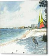 Blue Heron And Hobie Cats, Crescent Beach, Siesta Key Canvas Print