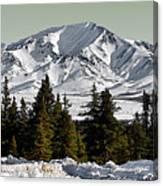 Denali Park - Alaska Canvas Print