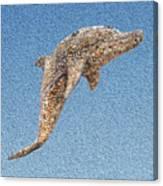 Dolphin Shell Art Sculpture Canvas Print