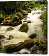Eagle Creek Canvas Print
