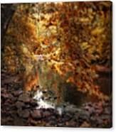 Fall Reflected Canvas Print