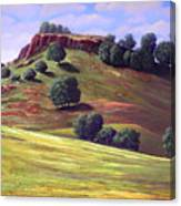 Flowering Meadow Canvas Print