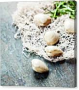 Food Background With Seafood And Wine Canvas Print