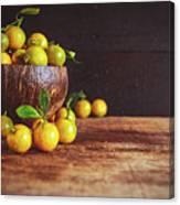 Fresh Kumquat Fruits Canvas Print