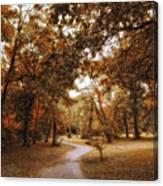 Golden Path Canvas Print