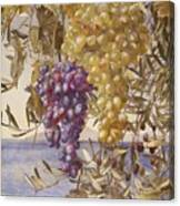 Grapes And Olives Canvas Print