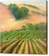 Heart Mountain Canvas Print