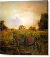 Hilltop Meadow Canvas Print