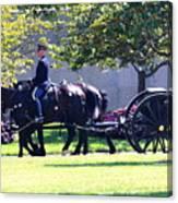 Horse And Caisson Team At Arlington Cemetery Canvas Print