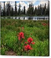 Ibantik Lake Trail Canvas Print