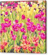 Impressionist Floral Xvi Canvas Print