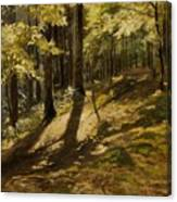 In A Forest Canvas Print