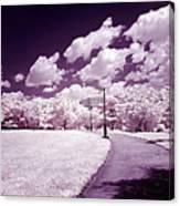 Infrared Garden Canvas Print