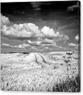 Infrared Landscape In Norway Canvas Print
