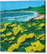 Jalama Beach Canvas Print