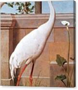 kb Marks Henry-Indian Crane Bullfinch and Thrush Henry Stacy Marks Canvas Print