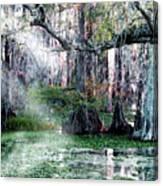 Lake Martin La Canvas Print