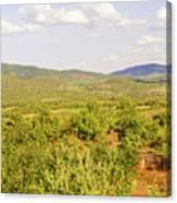 Landscape In Tanzania Canvas Print
