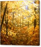 Lanterns Of Gold Canvas Print