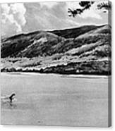 Loch Ness Monster, 1934 Canvas Print
