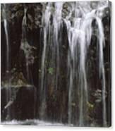 Maui Waterfall Canvas Print