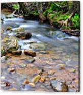 Middle Fork Of Williams River Canvas Print