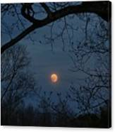 Misty Moonrise Canvas Print