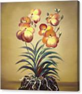 Orange Orchid Flowers Canvas Print