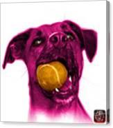 Pink Boxer Mix Dog Art - 8173 - Wb Canvas Print