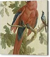 Plants And Animals Canvas Print