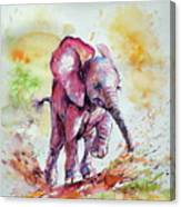 Playing Elephant Baby Canvas Print